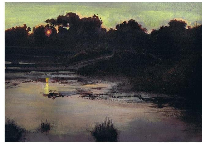 Evening in the Wetlands