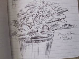 sketches and local scenes 028