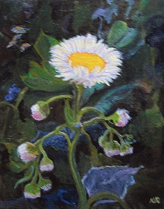 Fleabane Painting 004